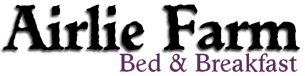 Airlie Farm Bed and Breakfast Inn